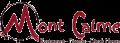 logo_projet-final